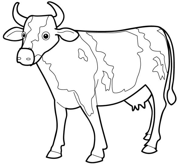 Cow coloring picture - photo#3