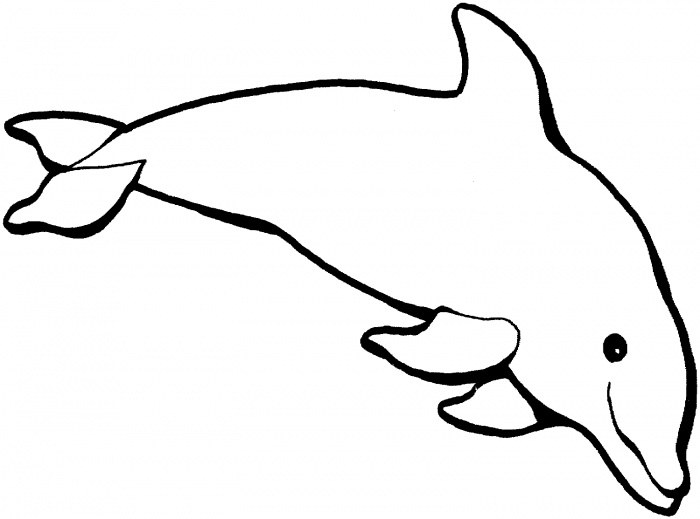 e coloring pages for dolphins - photo #7