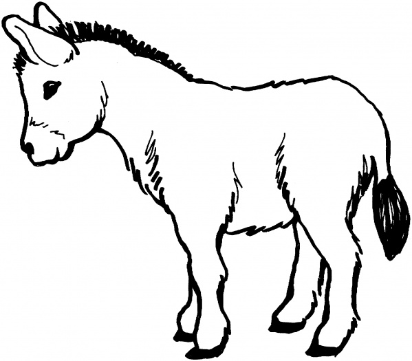 d is for donkey coloring pages - photo #7