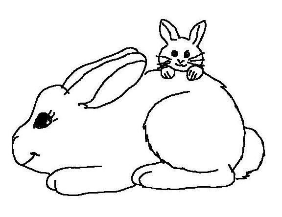 Rabbits coloring page