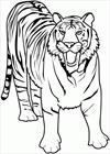 Tiger 2 coloring page