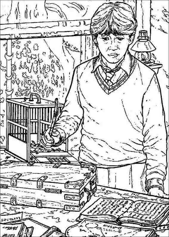 Harry Potter 049 Coloring Page