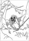 Spiderman 072 coloring page