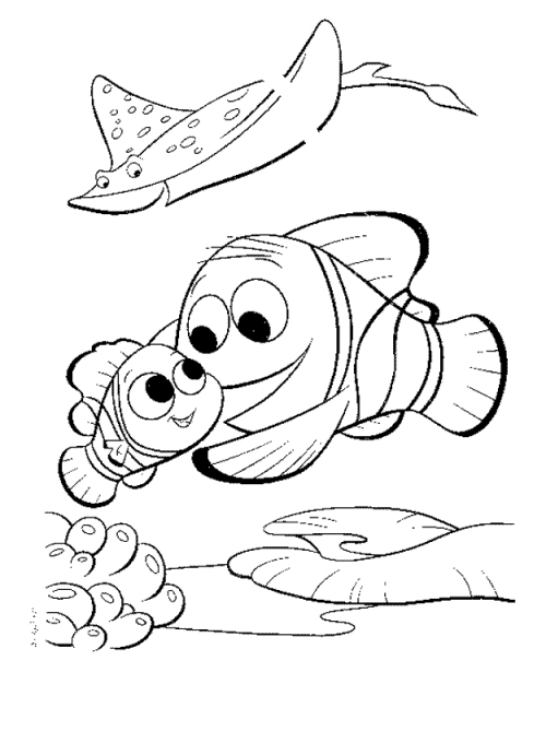 disney nemo coloring page - Crush Finding Nemo Coloring Pages