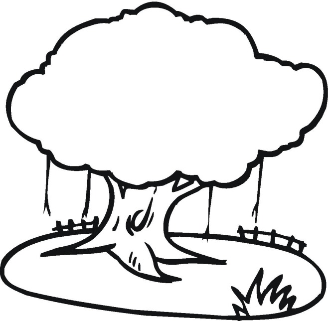 Tree 3 Coloring Page