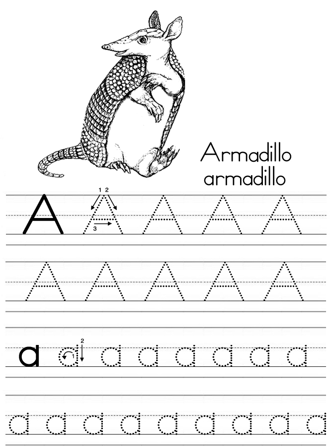 Alphabet ABC letter A Armadillo coloring page