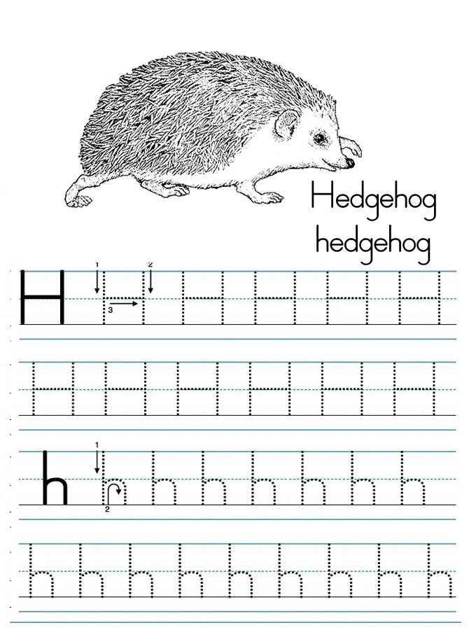 Alphabet ABC letter H Hedgehog coloring page