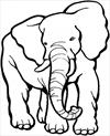 Elephant 4 coloring page