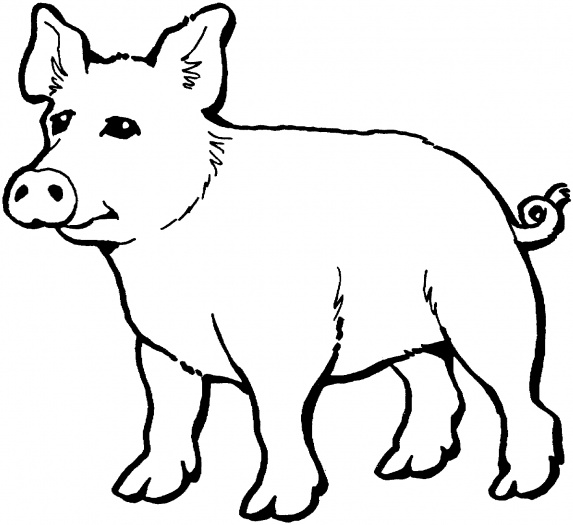 Pig 4 coloring page