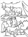 Noah animals coloring page