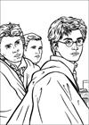 Harry Potter 046 coloring page