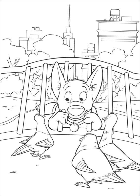 Bolt and pigeons coloring page