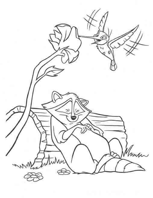Pocahontas raccoon sleeping and colibri bird coloring page
