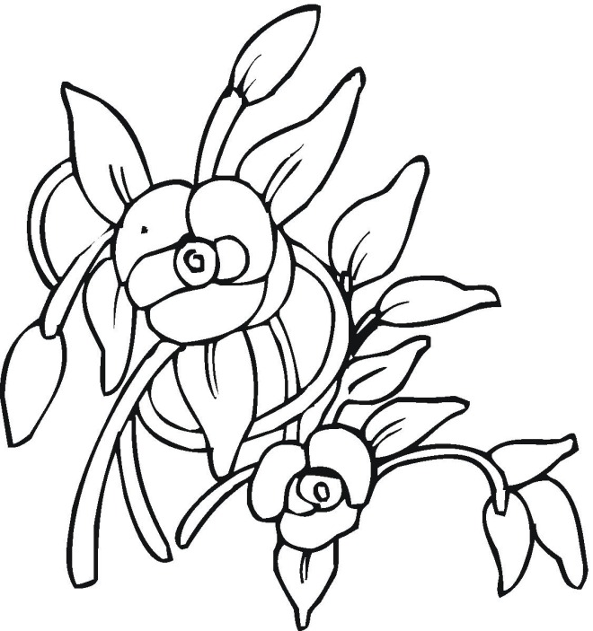 Flower 08 coloring page