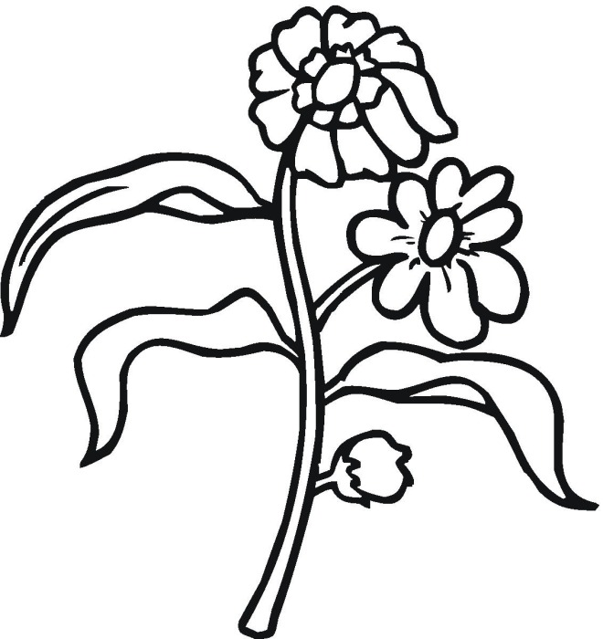 Flower 09 coloring page