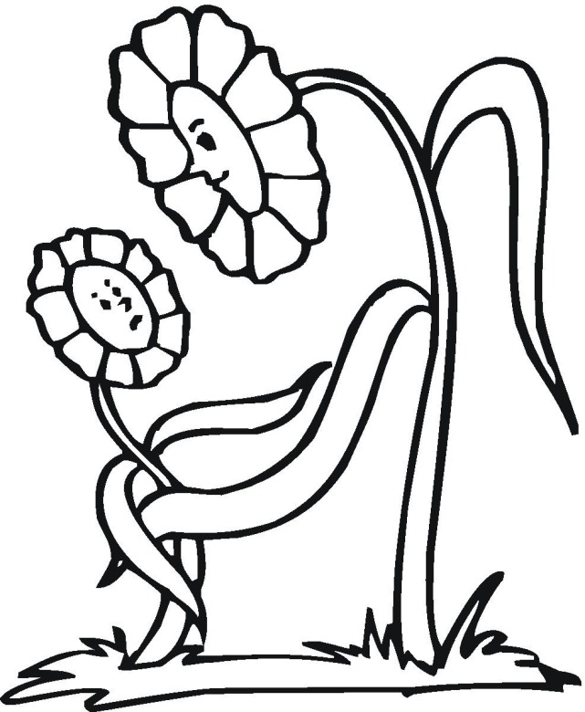 Flower 13 coloring page