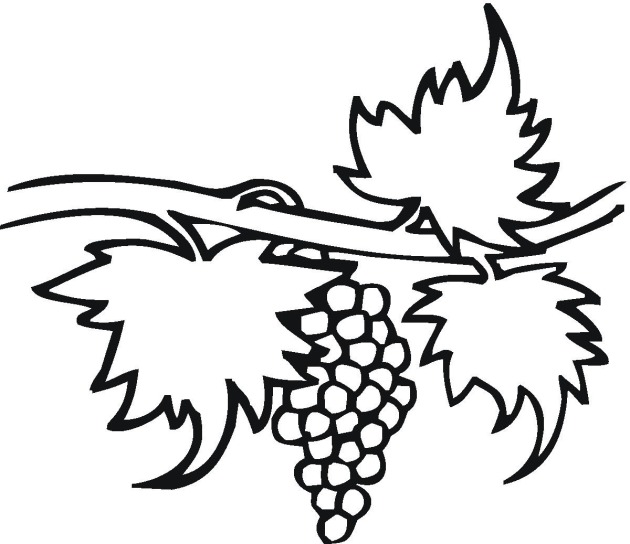 Fruit Grapes Coloring Page