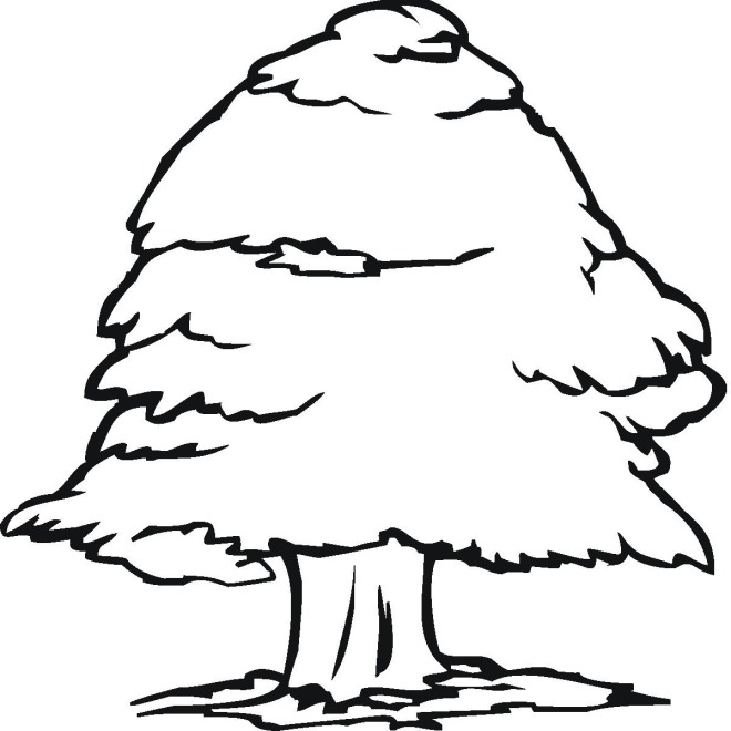 Tree 6 coloring page