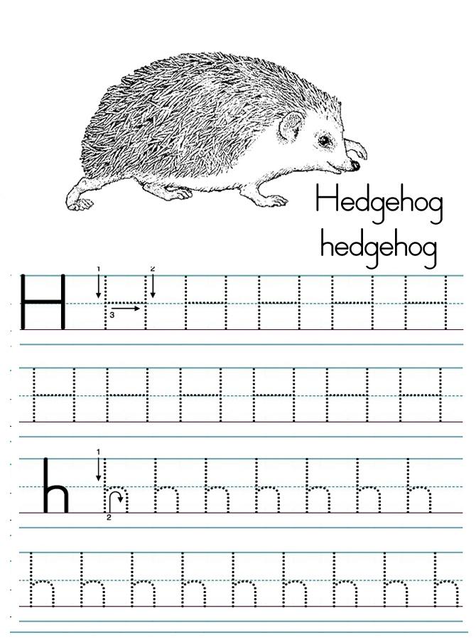 Alphabet ABC letter H Hedgehog coloring page